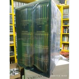 Vargas Llosa, Romanzi, 1 e...