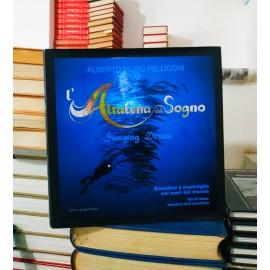L'Altalena del sogno -...